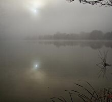 Lake Ginninderra in Canberra/Australia on a foggy morning (4) by Wolf Sverak