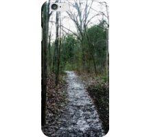 Scenic Scenery  iPhone Case/Skin