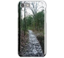Scenic Scenery  iPhone Case/Skin