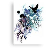 EXPECTO PATRONUM HEDWIG WATERCOLOUR Canvas Print