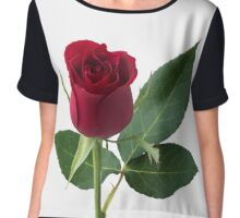 Single red rose, isolated on white background Chiffon Top