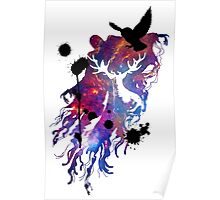 HARRY POTTER HEDWIG GALAXY Poster
