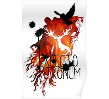 EXPECTO PATRONUM HEDWIG FIRE Poster