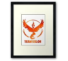Team Valor Framed Print