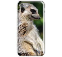 Bemused Meerkat iPhone Case/Skin
