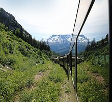 Train to Whitepass by Eileen McVey