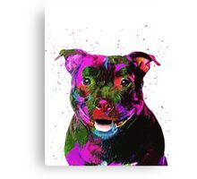 Staffordshire Bull Terrier Pop Art Portrait Canvas Print