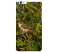 Whitethroat iPhone Case/Skin