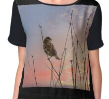 """""""Not a sparrow falls unknown to God's eye."""" Chiffon Top"""