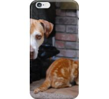 Really?!? iPhone Case/Skin