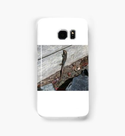 Eastern Water Skink - Blue Mountains Samsung Galaxy Case/Skin