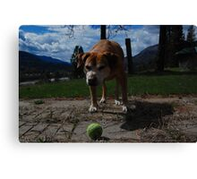 lets play ball Canvas Print