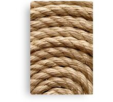 Sisal rope arranged as background, close-up shot Canvas Print