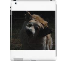 Silly Coda iPad Case/Skin