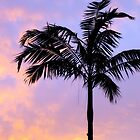 Tropical Sunset by kfisi