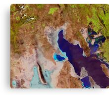 Great Salt Lake Utah Satellite Image Canvas Print