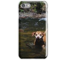 determined dog iPhone Case/Skin