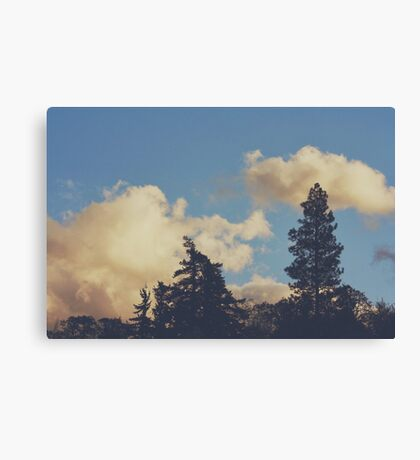 Fluffy White Canvas Print