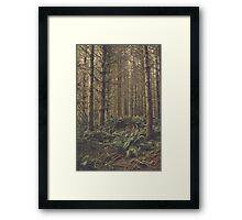 Fern Floor Framed Print