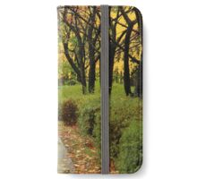 Autumnal After Rain  iPhone Wallet/Case/Skin
