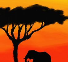 African Sunset by Leah Cluff