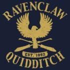 Ravenclaw Quidditch by Rachel Krueger