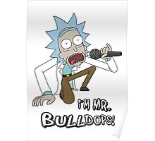 Rick and Morty – I'm Mr. Bulldops Poster