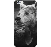 bear, black and white iPhone Case/Skin