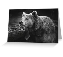 bear, black and white Greeting Card