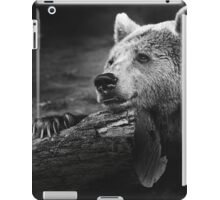 bear, black and white iPad Case/Skin