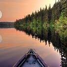 View from a Canoe of a Super Moon by Skye Ryan-Evans