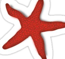 Starfish Funny Random Animal Joke Sticker