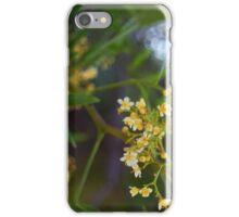 Summer Blossum iPhone Case/Skin
