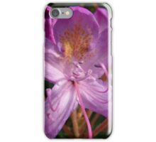 A Pinky-Purple Flower of Some Sort iPhone Case/Skin