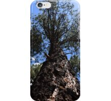 Natures Totems iPhone Case/Skin