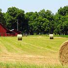 Round Hay and Red Barn by WildestArt