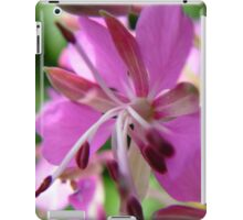 Close-up Willow Herb iPad Case/Skin