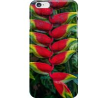 palm tree flower iPhone Case/Skin