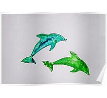 Dolphins in green Poster