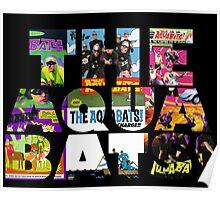 another aquabats design Poster