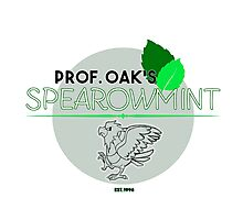 Spearowmint Gum Photographic Print