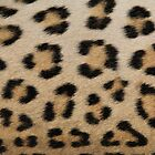 Leopard Skin Pattern - Natural Camouflage and Art by LivingWild