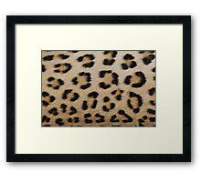 Leopard Skin Pattern - Natural Camouflage and Art Framed Print