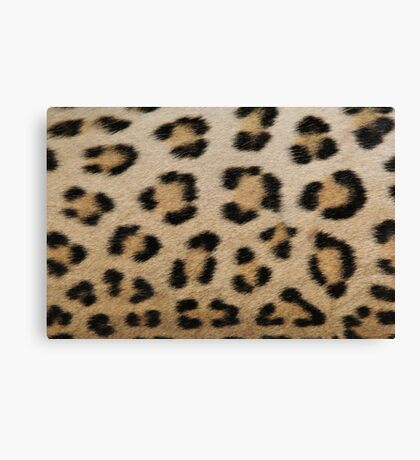 Leopard Skin Pattern - Natural Camouflage and Art Canvas Print
