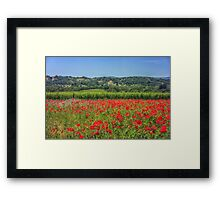Poppy vineyards Framed Print