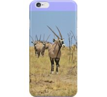 Oryx - African Wildlife - Gemsbok Line of Horns iPhone Case/Skin