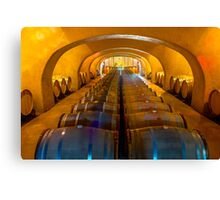 Domaine Bertaud Belieu wine celler, France Canvas Print