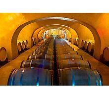 Domaine Bertaud Belieu wine celler, France Photographic Print
