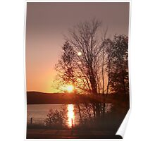 Sunset and trees Poster