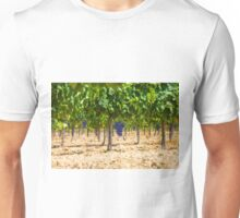Red grapes at Saint Tropez vineyard, France Unisex T-Shirt